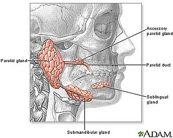 parotidectomy and facelift
